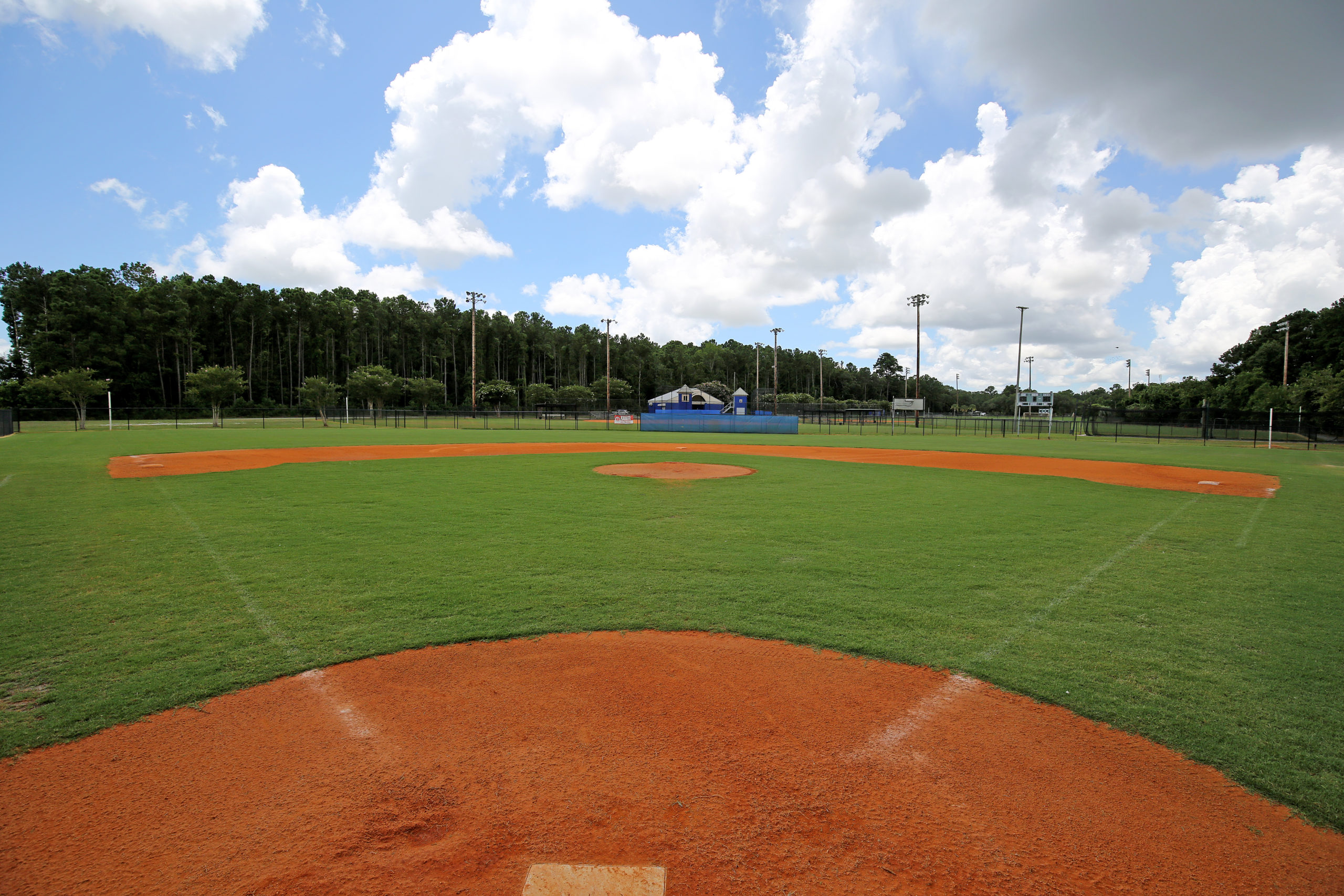 Ballfield with green grass and brown dirt