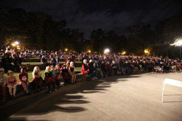 A large crowd seating watching the festivities